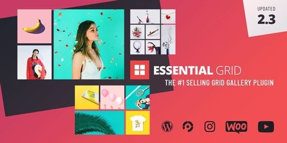 Essential Grid Gallery - Wordpress Plugin