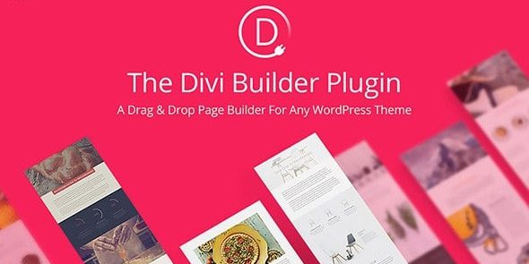 The Divi Builder - Visual Page Builder
