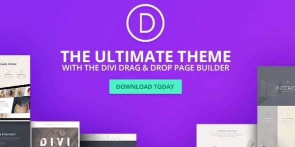 Divi WordPress Theme - All-In-One WordPress Theme & Visual Page Builder