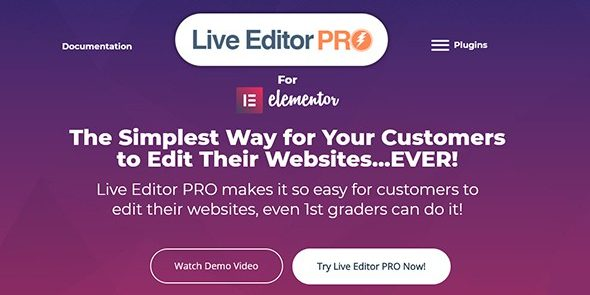 Live Editor PRO for Elementor